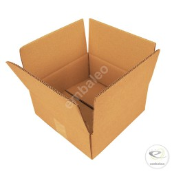 Cartón canal doble 25 x 25 x 10 cm