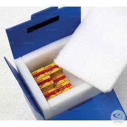 Caja isotérmica reutilizable en plástico y espuma de polietileno