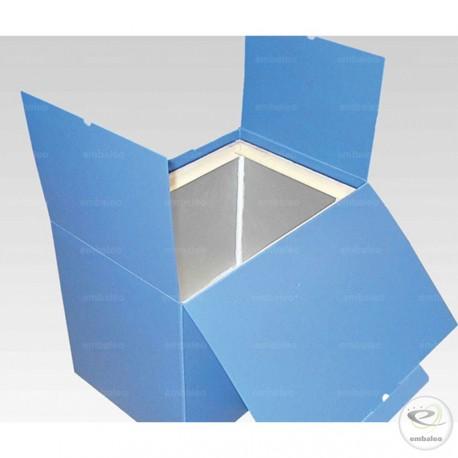 Caja isotérmica reutilizable en plástico y espuma de poliuretano