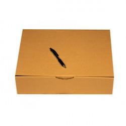 Caja postal A3 43x30x12 cm