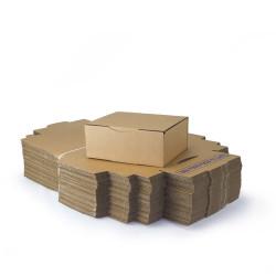 Caja postal edición 25x20x10 cm