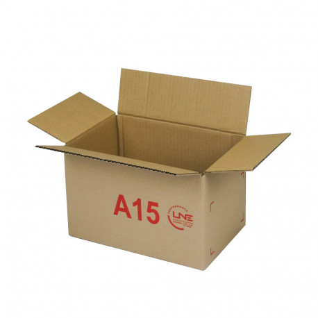 Caja de cartón 29,5 x 19,5 x 18,5 cm